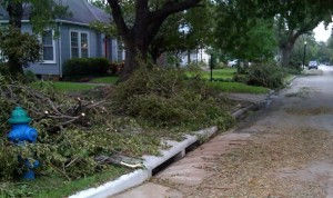 Tree limbs and litter lined up Monday for city pickup.